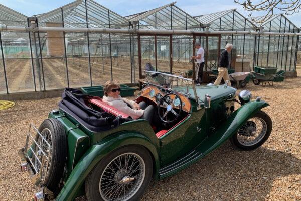Mark Newton - Short trip out in 1936 MGTA to collect fresh asparagus from #cambridgeasparagusfarm in Abington, Cambridge